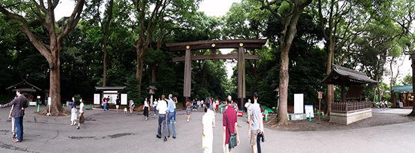 Meiji Shrine Gate in Yoyogi Park