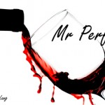Mr Perfect on Smashwords
